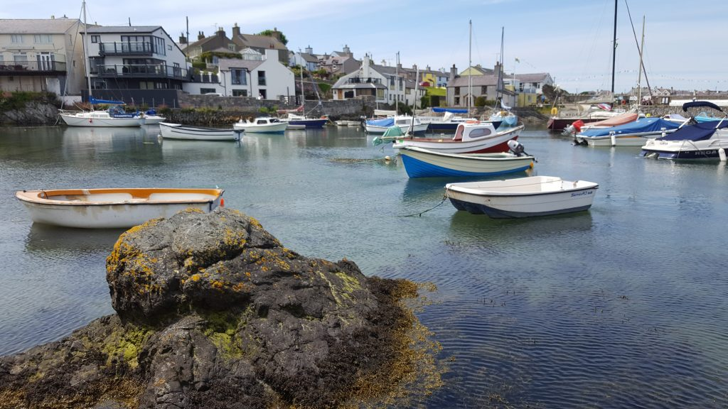 Cemaes Harbour View